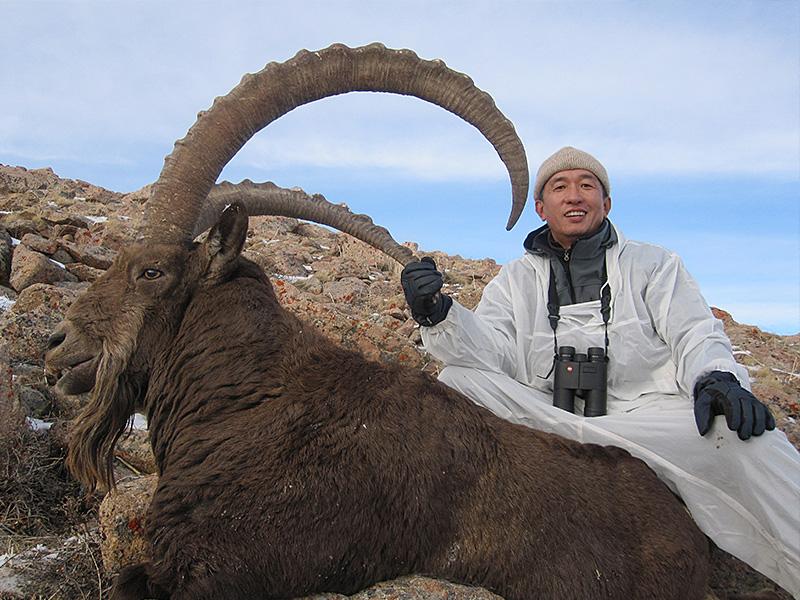 ibex_kazakhstan_04