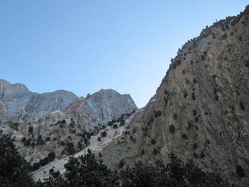 bukharan_marhor_tajikistan_02