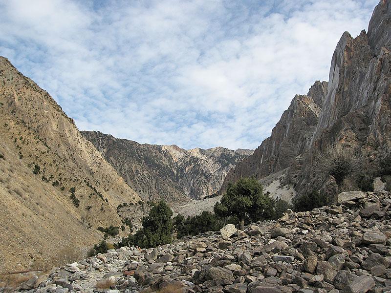 bukharan_marhor_tajikistan_03